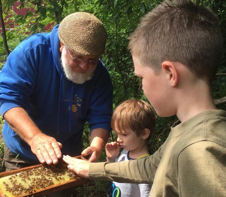 spreekbeurt bijen in Urk